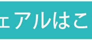 ' . the_title_attribute('echo=0') . '